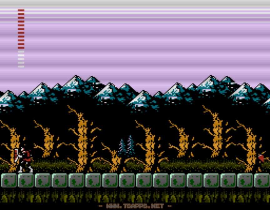 ザダムの森・上の道を左へ進む