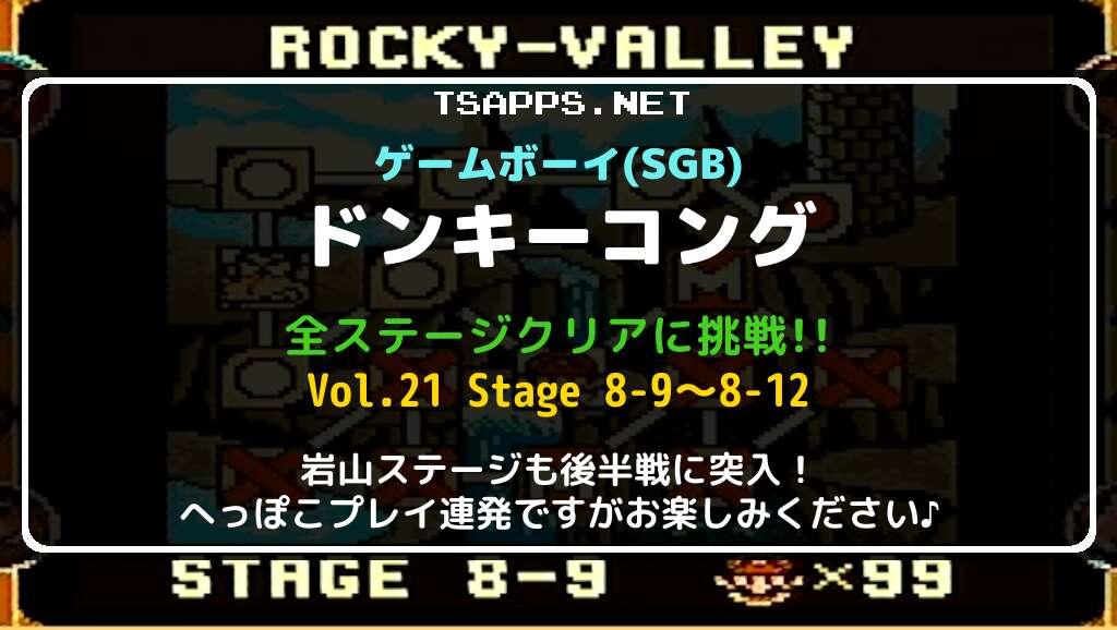 ゲームボーイ版ドンキーコング 全面攻略 Vol.21