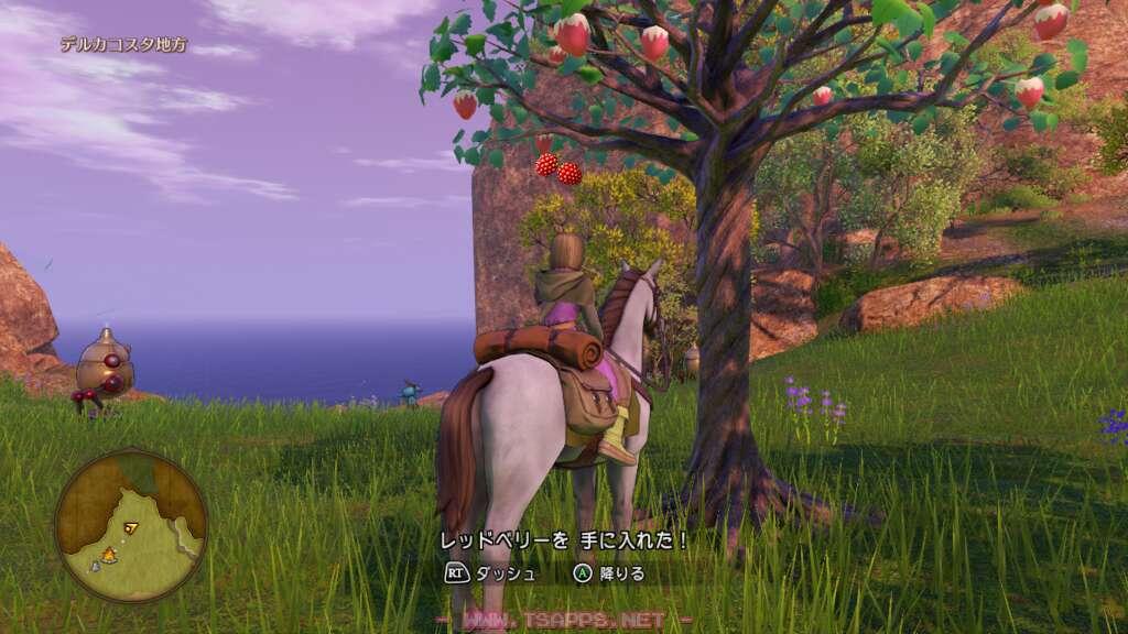 キャンプ地の北東にはレッドベリーの木