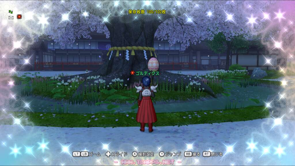 カミハルムイ城の桜の木