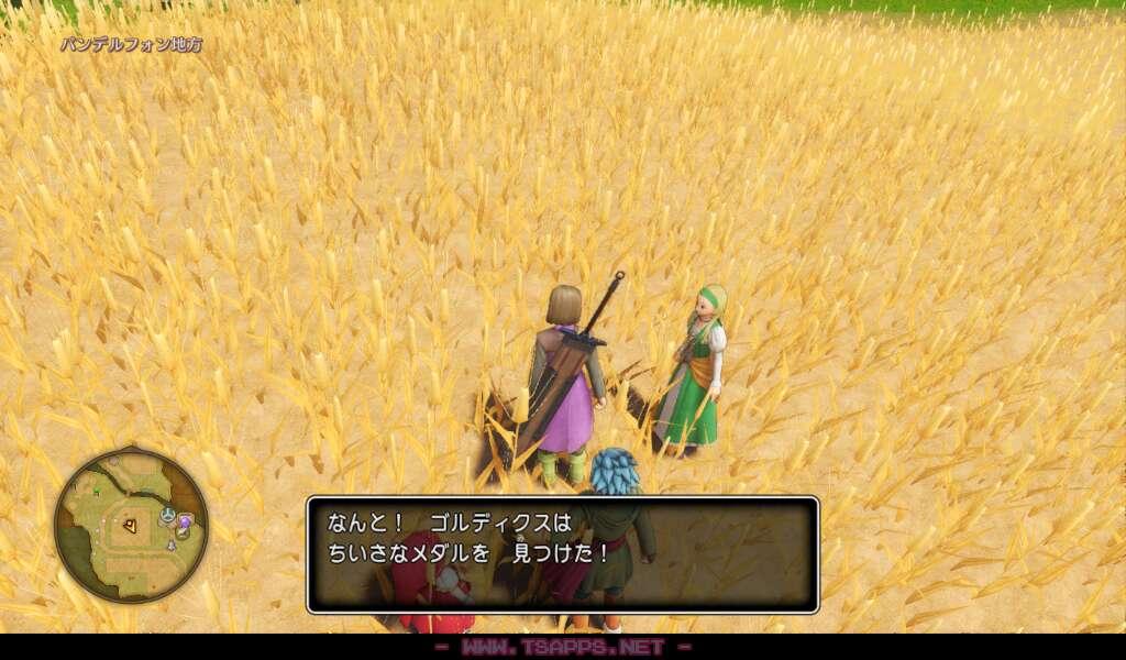 小麦畑の真ん中を調べるとちいさなメダルゲット!